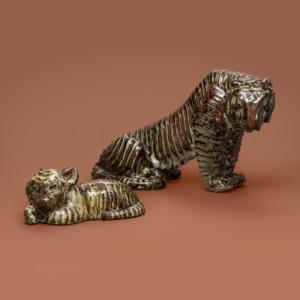 Michael Schilkin, Tiikerinpentu ja tiikeri, Arabia