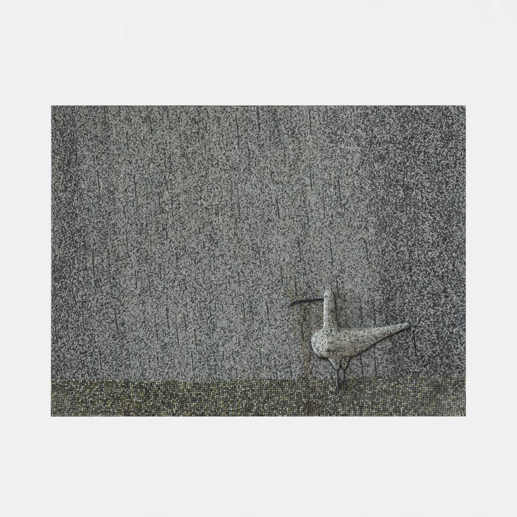 Kuovi sateessa / Lintu sateessa